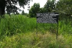 Kigugu-Irrigation-Scheme-Farms